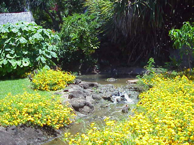 Gardens of Hawai'i